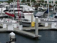 Docks For Sale in Key West Sunset Marina
